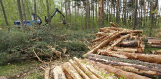 Kintampo South District Environmental situation